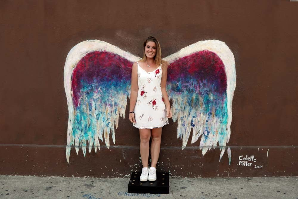 Wings by Colette Miller
