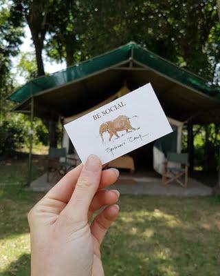 biglietto social Governor's Camp Kenya