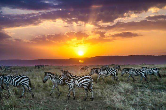 colori dell'Africa